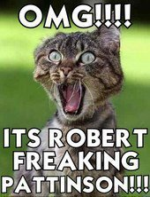 Freakin' Kitty