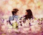 """""""Edward and Bella"""" Eclipse VI"""
